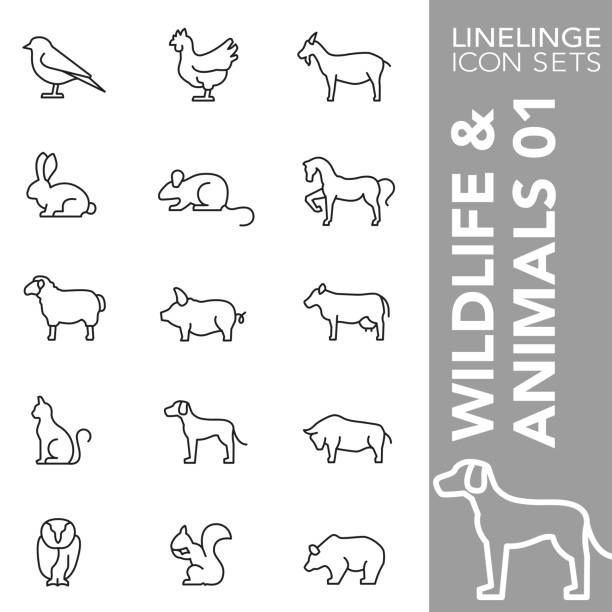 stockillustraties, clipart, cartoons en iconen met dunne lijn icon set van dieren in het wild en dieren 01 - pig farm