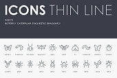 Set of INSECTS Thin Line Vector Icons and Pictograms