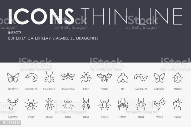 Thin line icons vector id912194342?b=1&k=6&m=912194342&s=612x612&h=b2kah20voao7w4d8ab995e7gvu1cwpjqwnxdajfjaqa=