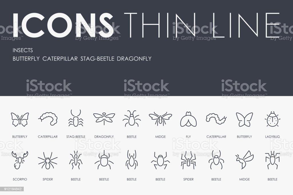 INSECTS Thin Line Icons vector art illustration