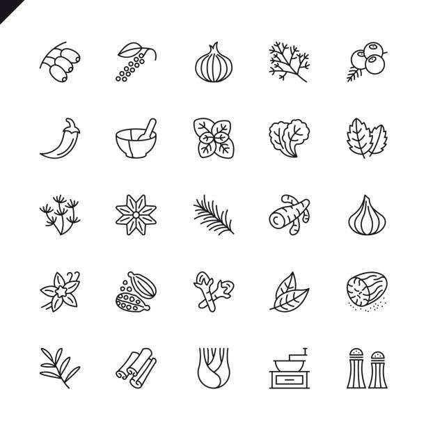 cienkie przyprawy liniowe, przyprawy i zioła ikony zestaw - liść mięty przyprawa stock illustrations