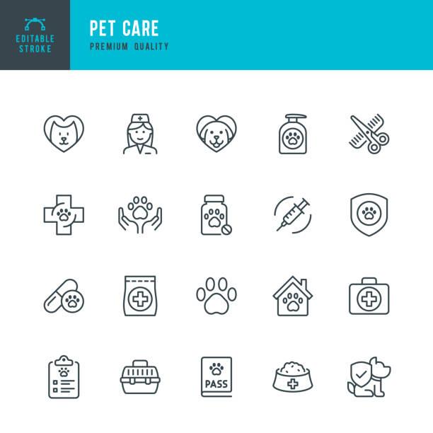 ilustraciones, imágenes clip art, dibujos animados e iconos de stock de pet care - conjunto de iconos vectoriales de línea delgada. trazo editable. píxel perfecto. conjunto contiene iconos tales como mascotas, perro, gato, médico, veterinario, aseo, comida para mascotas. - mascota