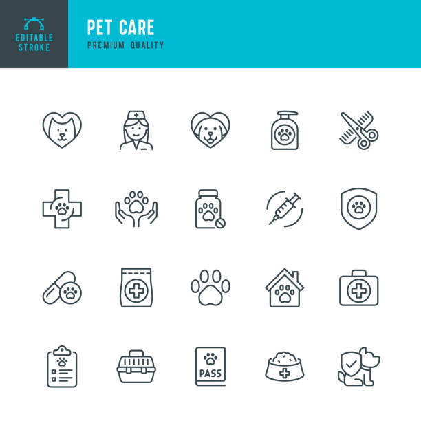 PET CARE - thin line vector icon set. Editable stroke. Pixel Perfect. Set contains such icons as Pets, Dog, Cat, Doctor, Veterinarian, Grooming, Pet Food. PET CARE - thin line vector icon set. Editable stroke. Pixel Perfect. Set contains such icons as Dog, Cat, Pets, Veterinarian, Grooming, Pet Food, Pet Carrier, Doctor, Paw Print, Pet Exam. animal stock illustrations