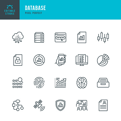 DATABASE - thin line vector icon set. 20 linear icon. Pixel perfect. Editable outline stroke. The set contains icons: Big Data, Biometric Data, Analyzing, Diagram, Personal Data, Network Server, Cloud Computing, Archive, Stock Market Data, Brain.