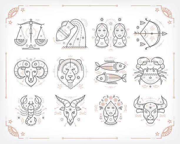 ilustrações de stock, clip art, desenhos animados e ícones de linha fina zodiacal vector símbolos. isolado sobre branco. - astrologia