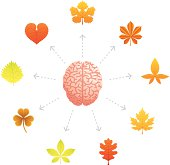 Conceptual illustration representing a brain surrounded by autumn leaves.
