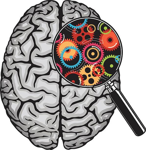bildbanksillustrationer, clip art samt tecknat material och ikoner med thinking, idea concept. - brain magnifying