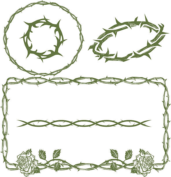 Thorn Collection Collection featuring thorn themed clip art sharp stock illustrations