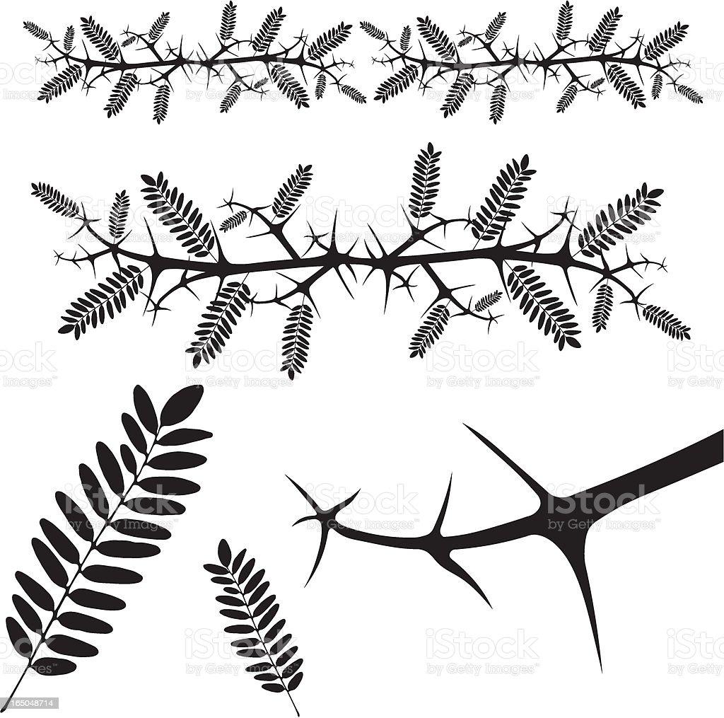 thorn - vector vector art illustration