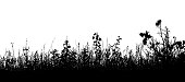 Silhouette of grass and weeds