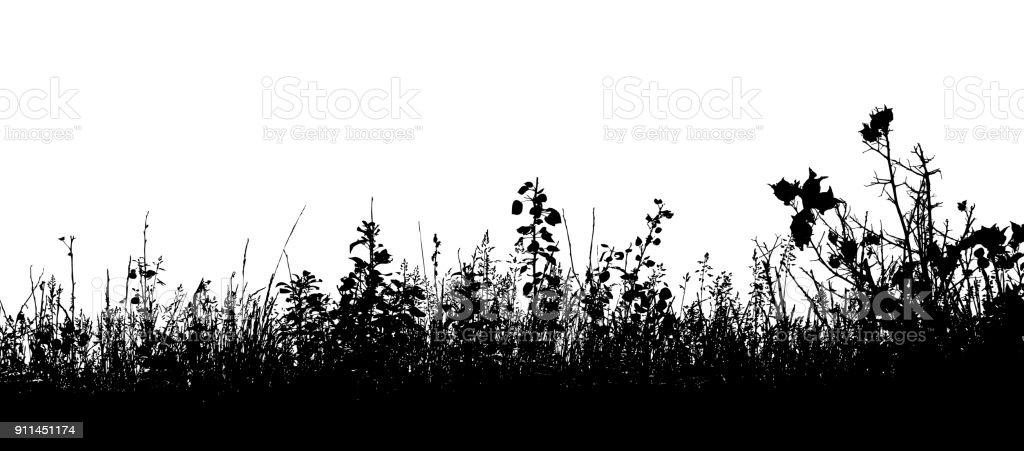 Dornige Grass – Vektorgrafik