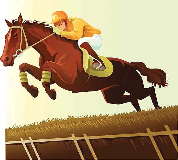 thoroughbred clearing a hurdle in horse race - horse racing stock illustrations