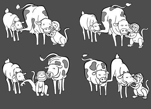 Three Animals In Four Actions, Sheep-Goat, Bull- Milk Cow, Monkey