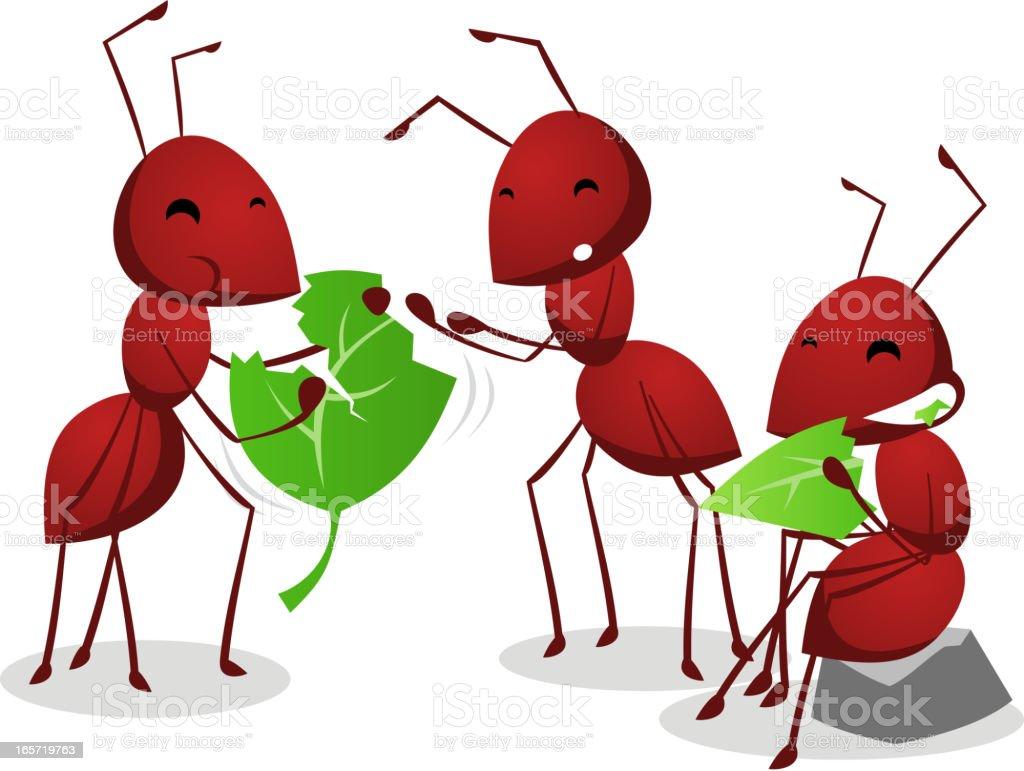 Three Ants eating green leafs vector art illustration
