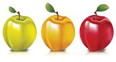 Vector illustration of three apples.