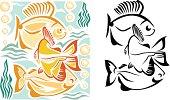Three aquarium fish