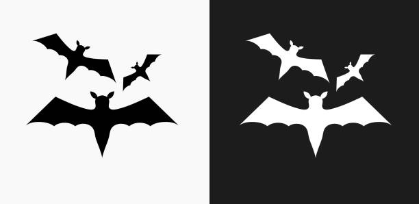 three bats flying icon on black and white vector backgrounds - bat stock illustrations, clip art, cartoons, & icons