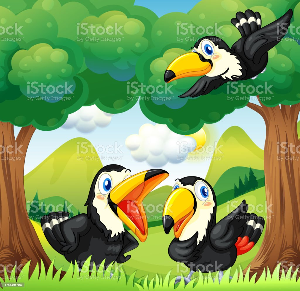 Three black birds at the forest royalty-free stock vector art