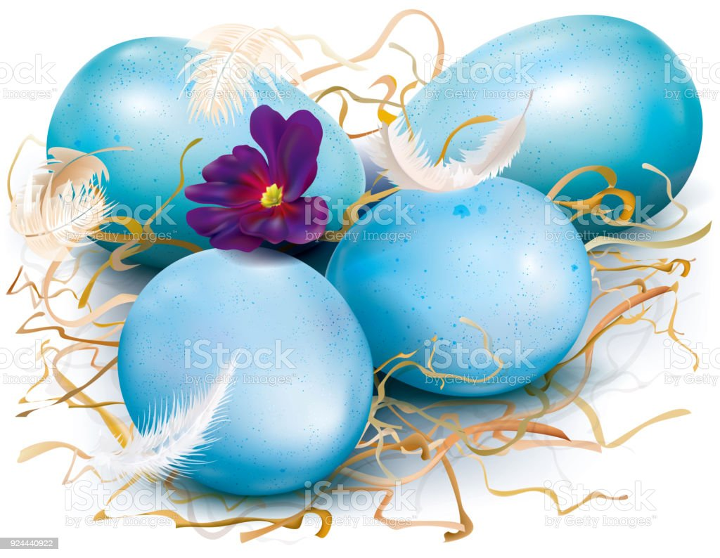 Drei Blaue Eier Stock Vektor Art Und Mehr Bilder Von Agrarbetrieb