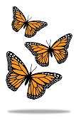 istock Three Butterflies With Shadow 1284617637