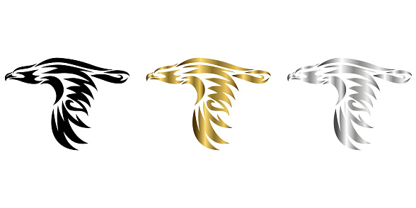 three color black gold silver Line art vector illustrator of eagle that is flying