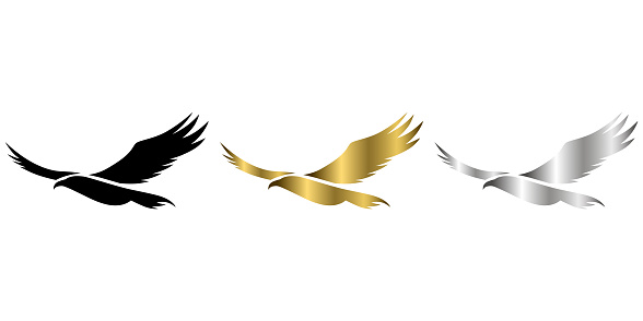 three color black gold silver vector logo of eagle that is flying