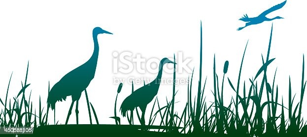 Crowned Crane.eps10.0