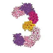 Drie cijfers gemaakt van veelkleurige phlox bloemen. Floral element van kleurrijke alfabet gemaakt van bloemen.  illustratie
