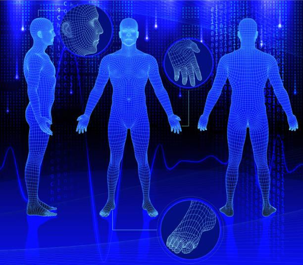 trójwymiarowa organów na tło abstrakcyjne - ludzka noga stock illustrations