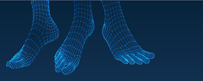Three dimensional feet. Set. Ware mesh from 3d app.