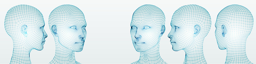 Three dimensional woman heads. Set. Ware mesh from 3d app.
