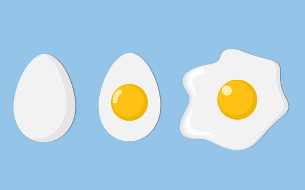 three eggs closeup: egg in shell, half and fried egg with shadow on blue, stock vector illustration - egg stock illustrations