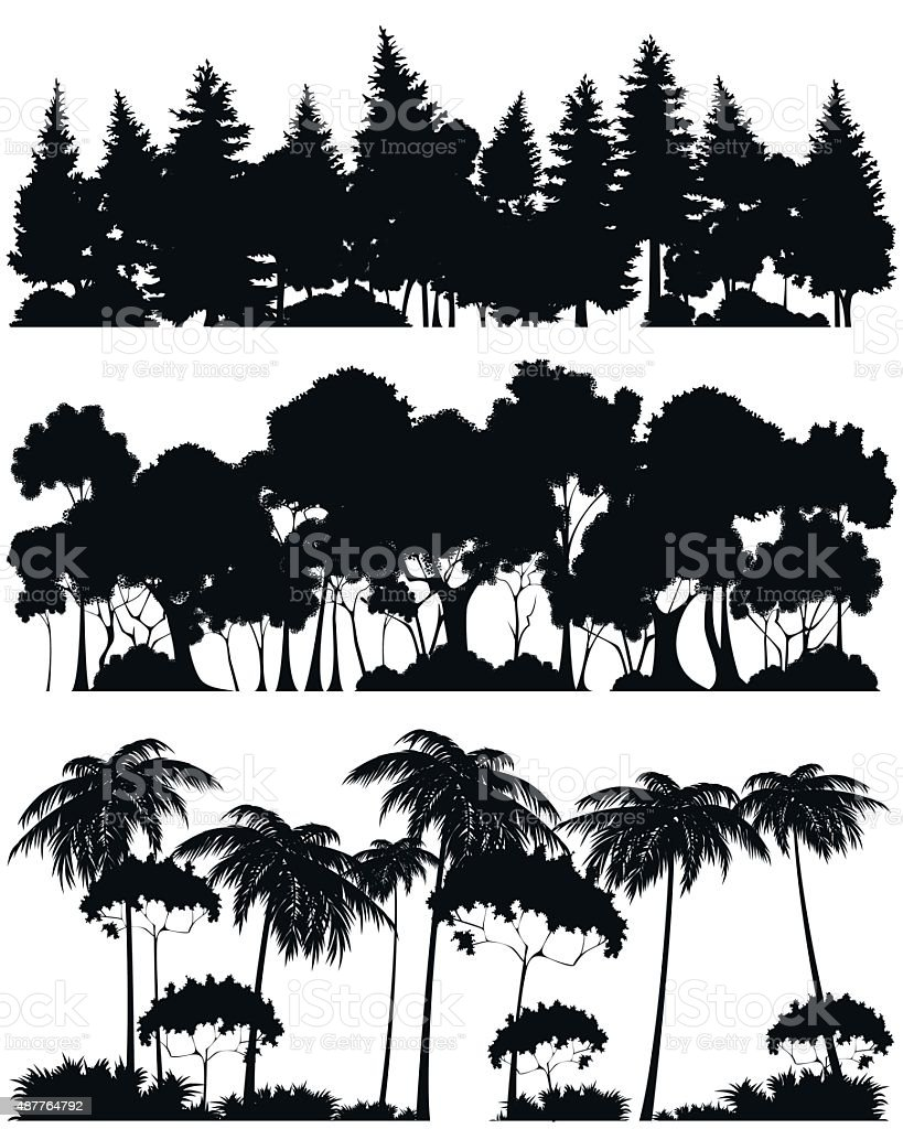 Three forests silhouettes vector art illustration