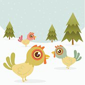 Three hens in the snow