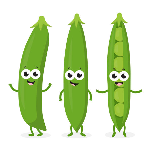 three funny peas - plant pod stock illustrations