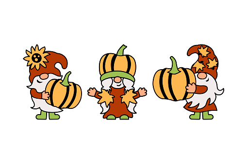 Three gnomes with pumpkins, sunflower and fall leaves