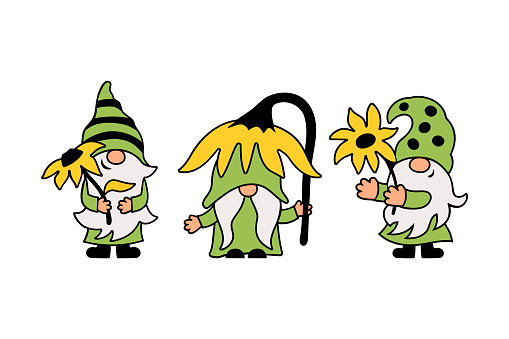 Three gnomes with sunflower are on white background.