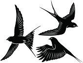 Three illustrations of black swallows