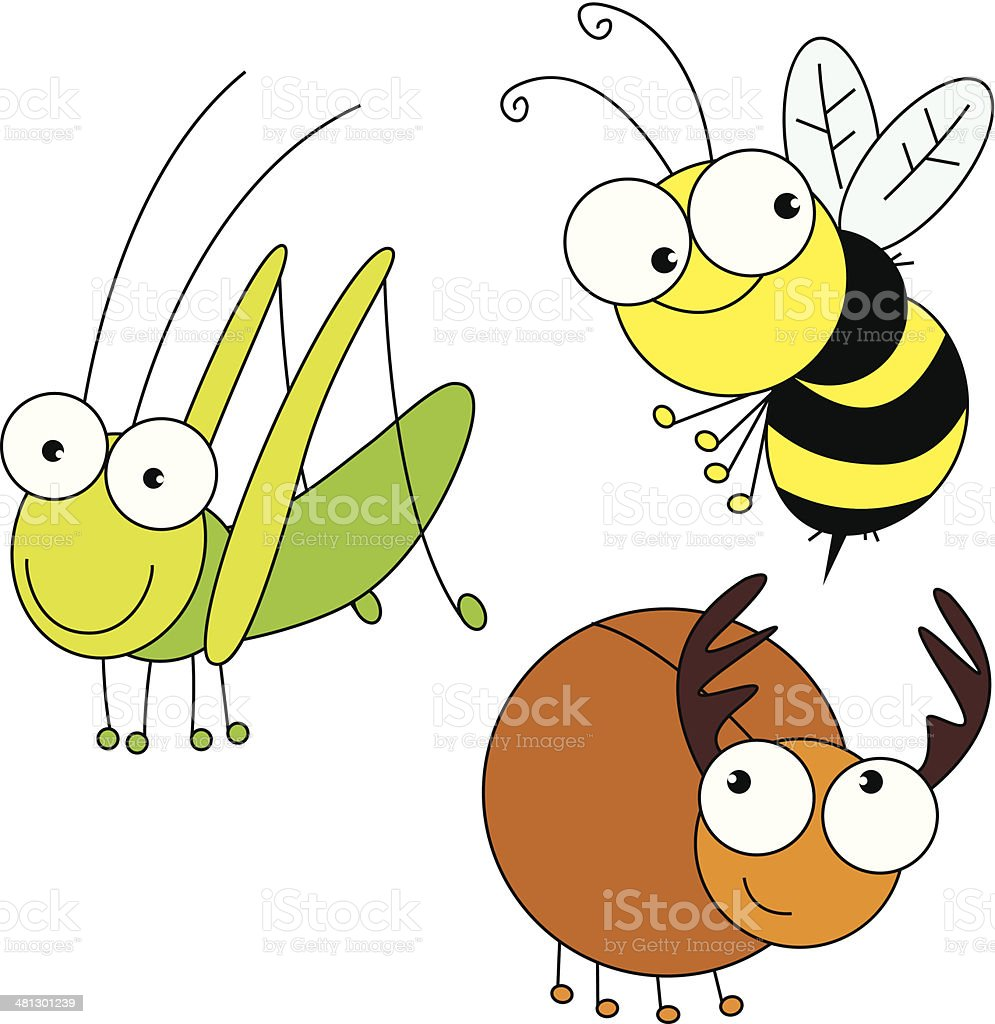 Three insect vector art illustration