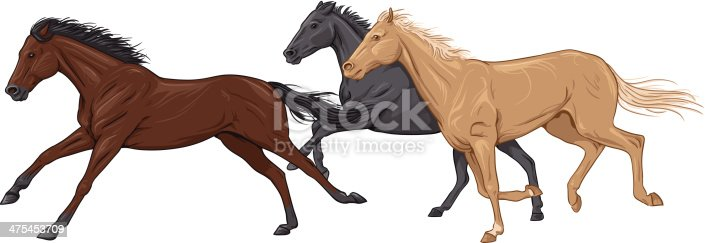 Illustration of a black, a brown and a palomino horse racing against each other