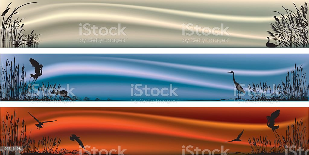 Three Marsh and Wetlands Scenes on Horizonal Banners vector art illustration