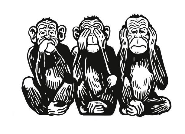 Three Monkeys – Vektorgrafik