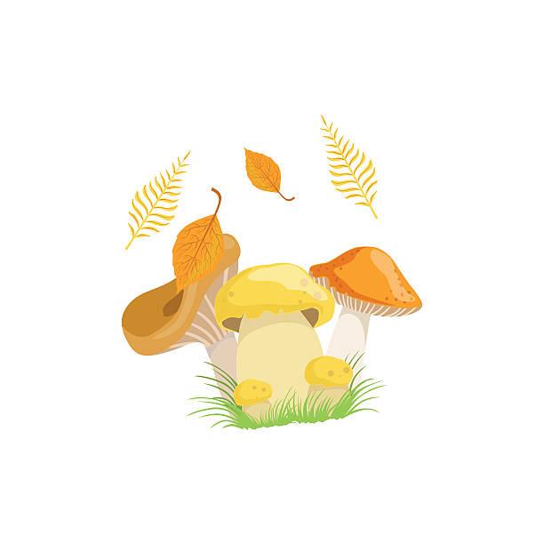 bildbanksillustrationer, clip art samt tecknat material och ikoner med three mushrooms as autumn attribute - höst plocka svamp