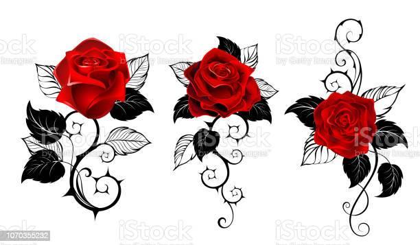 Drie Rode Rozen Voor Tattoo Stockvectorkunst en meer beelden van Blad