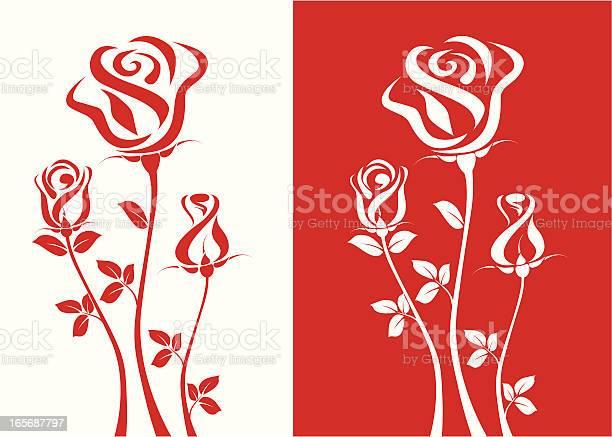 Three roses vector id165687797?b=1&k=6&m=165687797&s=612x612&h=g1mavtdp 9nu6s82jkcfpkbesl5a1ffz6og qi5wutu=
