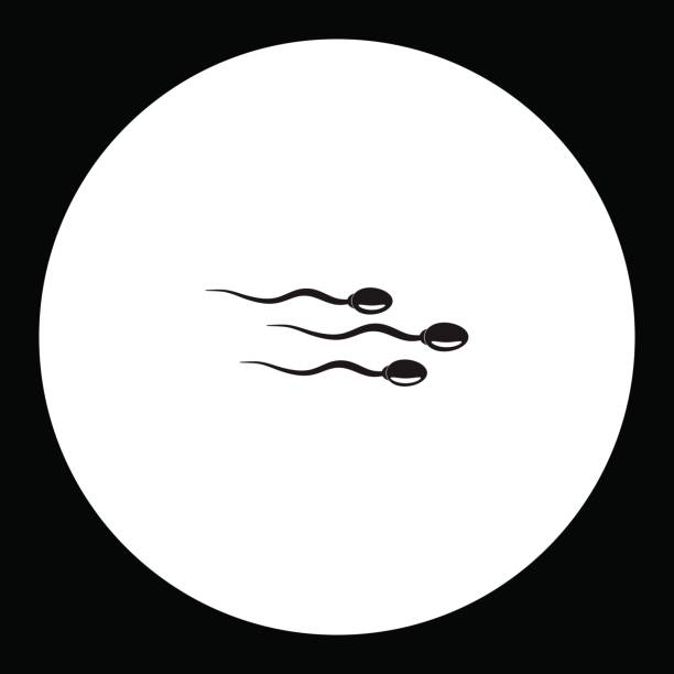 three sperm simple silhouette black icon eps10 vector art illustration