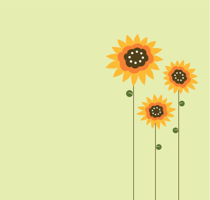 Three Sunflower Drawn On Left Side Of Green Background Stock Illustration - Download Image Now