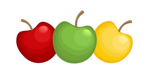 Three sweet apples. vector art illustration