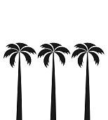 Three tall palm trees. Vector illustration