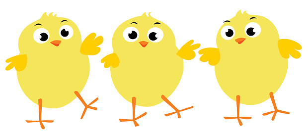 Three vector illustrations of Easter chicks